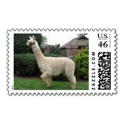 Photo of Alpaca Stamp 2