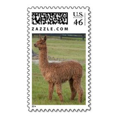 Photo of Alpaca Stamp 4
