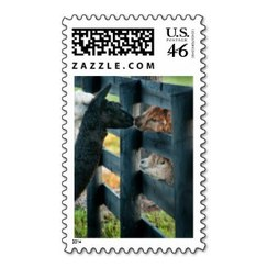 Photo of Alpaca Stamp 8