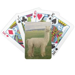 Photo of Alpaca Playing Cards