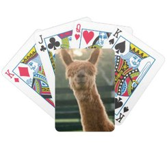 Photo of Smiling Alpaca Playing Cards