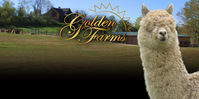 Golden Farms - Logo