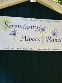 SERENDIPITY ALPACA RANCH - Logo