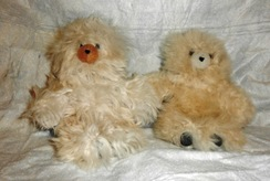 "Photo of Bears 10"" - 15"""