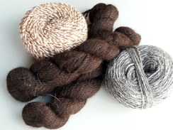 Photo of Yarn - Natural Colors