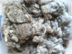 Raw Fleece Various colors and grades