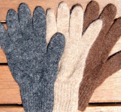 Gloves-All Terrain