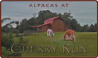 Alpacas at Cherry Run, LLC - Logo