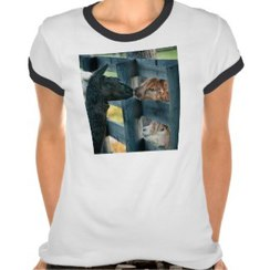 Photo of Kissing Alpaca T-Shirt