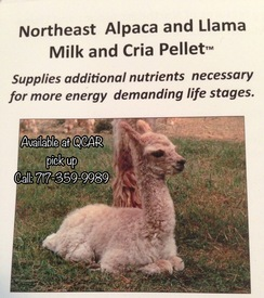Photo of Alpaca Feed - M&C