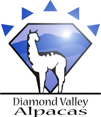 Diamond Valley Alpacas - Logo