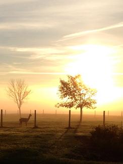 Cool, brisk sunrise at Salt Creek