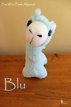 My Name is Blu!