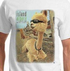 """Island Alpaca """"Roberto"""" Tee"""