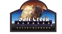Salt Creek Alpacas, Inc. - Logo