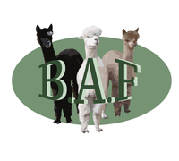 Borgstein Alpaca Farm - Logo