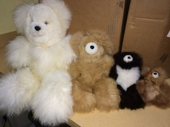Teddy Bears - Large