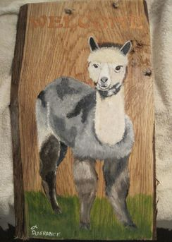 Photo of Alpaca Welcome Plaque - Silver Grey Cria
