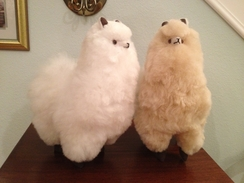 Photo of Standing Alpaca Doll - Medium Sized