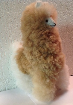 Photo of Alpaca Doll