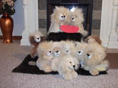 Seated stuffed alpaca Lion