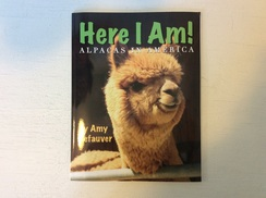Photo of Here I Am!  Book 912004