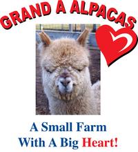 Grand A Alpacas - Logo