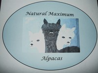 Natural Maximum Alpacas - Logo