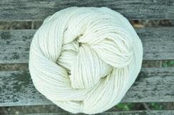 Photo of Sugar Magnolia in White