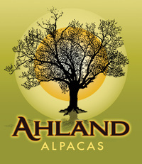 Ahland Alpacas (fake test account) - Logo