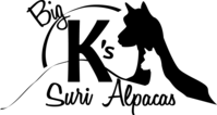 Big K's Suri Alpacas - Logo