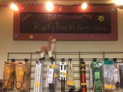 Dam vendor #46