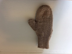 Photo of Eve Mittens 309002