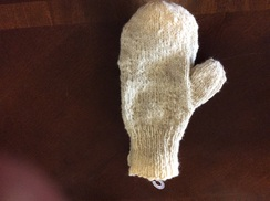 Photo of Dixon Mittens 309001