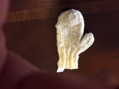 Photo of Dixon Mittens 309004