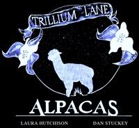 Trillium Lane Alpacas - Logo