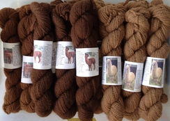 Alpaca Yarn - Sport Weight (FWM)