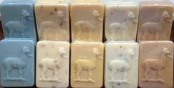 Photo of Goat's Milk Soap