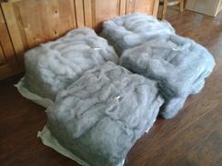 Gotland Wool- Roving