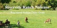 Riverside Ranch - Logo