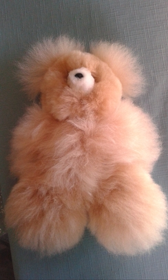 "Photo of 5 1/2"" tall Teddy bear"