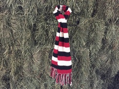 Photo of Alpaca Scarf - Striped