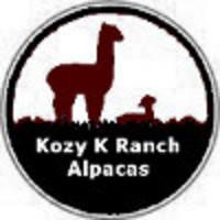 Kozy K Alpacas - Logo