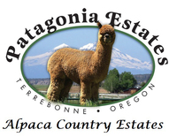 Patagonia Estates - Logo
