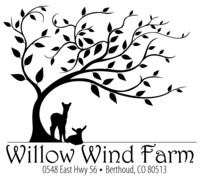 Willow Wind Farm - Logo