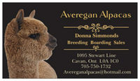 Averegan Alpacas - Logo