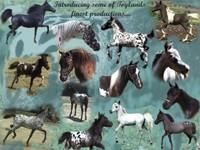 Toyland Falabella Miniature Horses - Logo