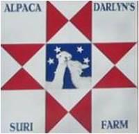 Alpaca Darlyn's Suri Farm - Logo