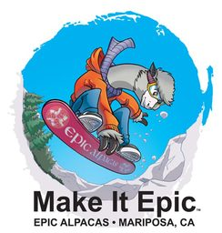 T-shirt - Make It Epic - Snowboarding