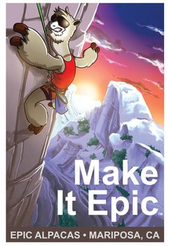 T-shirt - Make It Epic - Climbing